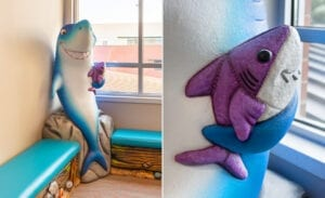 sculpted 3D shark holding a sculpted shark plush in a medical office waiting room on a custom bench seat
