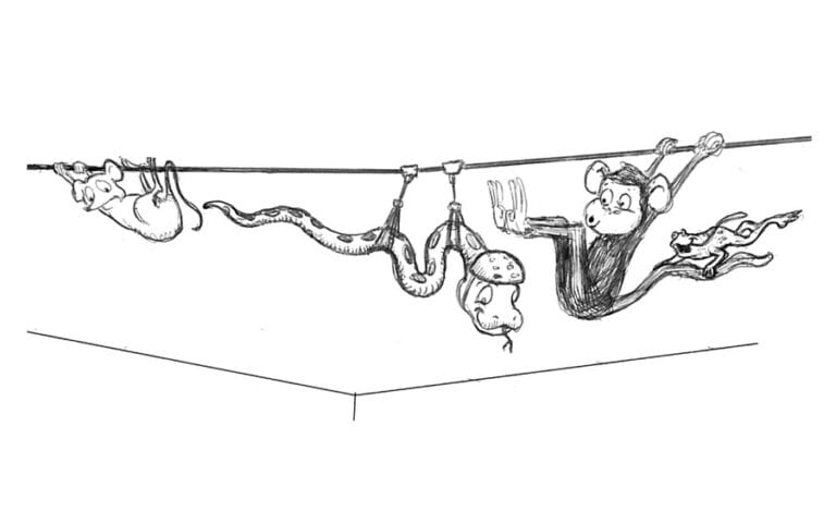 concept art of snake monkey and mouse characters on a zipline for a jungle themed office