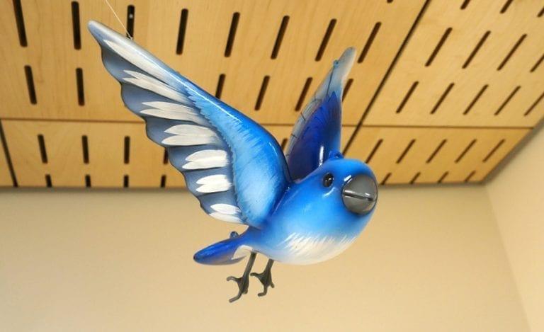 3D apoxy sculpture of a bluebird in a hospital