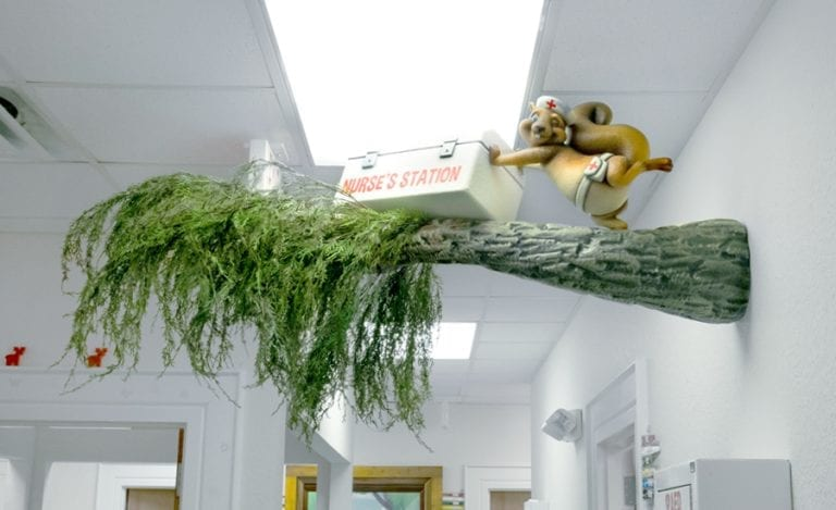 """wall mounted tree branch with sculpted squirrel in a nurse hat with """"nurse's station"""" first aid kit"""