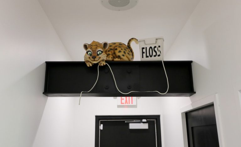 A baby leopard character with a floss box perched on a support beam.